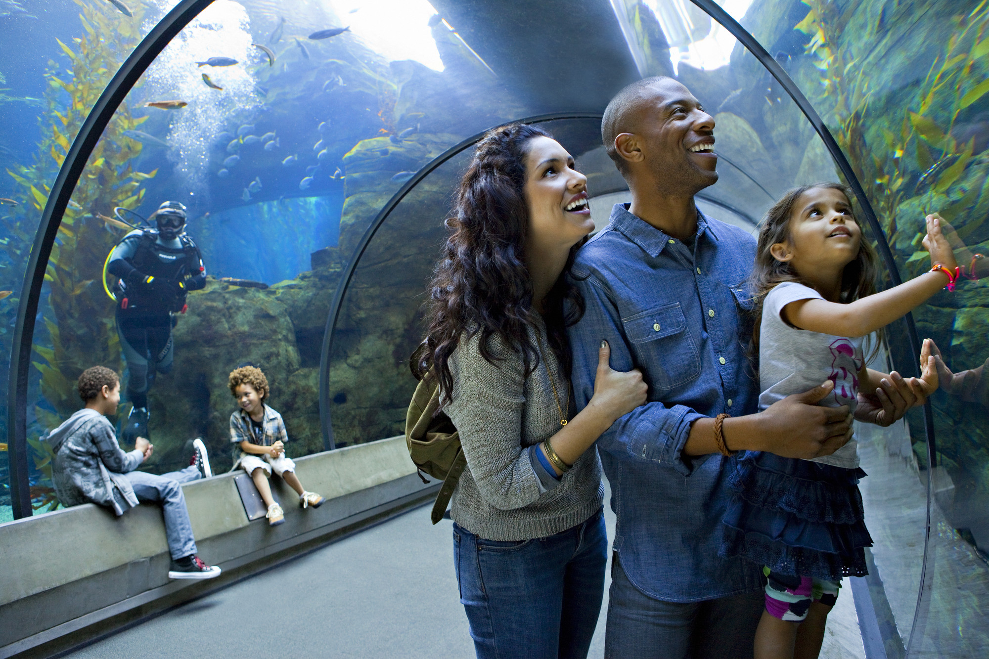 Family admiring fish in the Kelp Tank tunnel